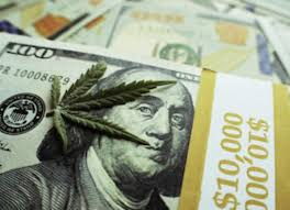 """Make 30% By Investing In """"Pure Cannabis"""""""